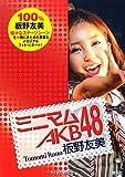 ミニマムAKB48 板野友美