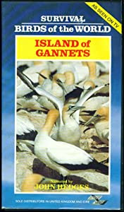 Island Of Gannets - Survival Birds Of The World - (Pal/vhs)