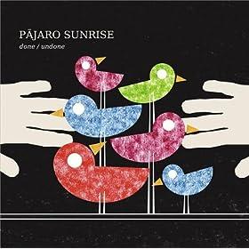 Cubra la imagen de la canción Salt & Spoon por Pajaro Sunrise