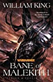 Bane of Malekith (Tyrion & Teclis, Band 3)