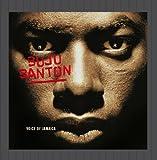 Buju Banton Voice Of Jamaica