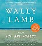 We Are Water Low Price CD: A Novel