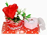Pragati Pro valentines day gift rose with ring in ring box