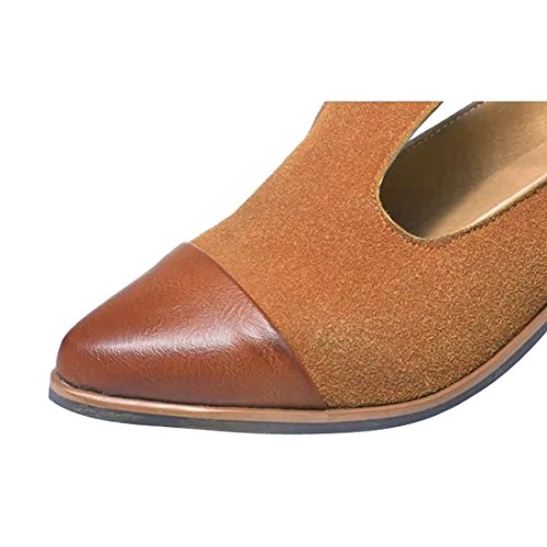Susanny Women's Vintage Cute T-strap Low Heel Pointed Toe Oxfords Pump Shoes with Buckle 6