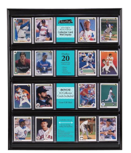 MCS 52894 Collector Card 16x20 Wall Display, Holds 20 Sports Cards with Black Frame (Wall Display Cards compare prices)