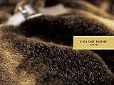 カルドニード・エリート 掛け毛布 2枚合わせ CALDO NIDO ELITE アクリル 毛布 (シングル/ブラウン)