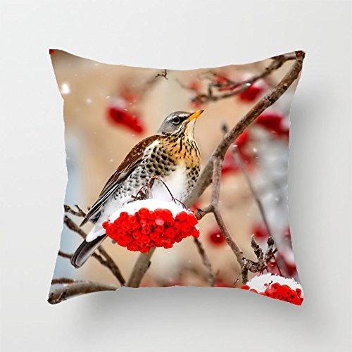 yinggouen-uccello-con-frutti-rossi-decorate-per-un-divano-federa-cuscino-45-x-45-cm
