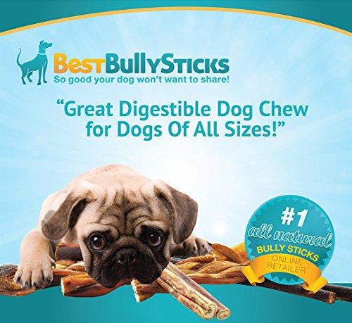 100 natural 6 inch bully sticks by best bully sticks 8oz bag animals pet. Black Bedroom Furniture Sets. Home Design Ideas