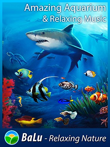 Amazing Aquarium & Relaxing Music