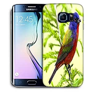 Snoogg Colorful Bird Printed Protective Phone Back Case Cover For Samsung Galaxy S6 EDGE / S IIIIII