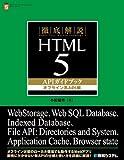 徹底解説HTML5APIガイドブック オフライン系API編