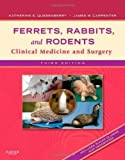 img - for Ferrets, Rabbits, and Rodents: Clinical Medicine and Surgery, 3e by Katherine Quesenberry (Nov 28 2011) book / textbook / text book