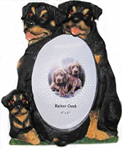 Amazon.com - Rottweiler Dog Family Hand Painted Picture Frame, Holds