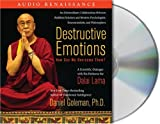 img - for Destructive Emotions: How Can We Overcome Them?: A Scientific Dialogue with the Dalai Lama book / textbook / text book