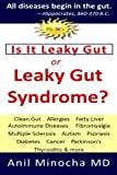 img - for Is It Leaky Gut or Leaky Gut Syndrome: Clean Gut, Allergies, Fatty Liver, Autoimmune Diseases, Fibromyalgia, Multiple Sclerosis, Autism, ... & More (Digestive Wellness) (Volume 2) book / textbook / text book