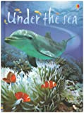 Fiona Patchett Under the Sea (Usborne Beginners)