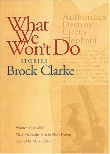What We Won't Do: Stories