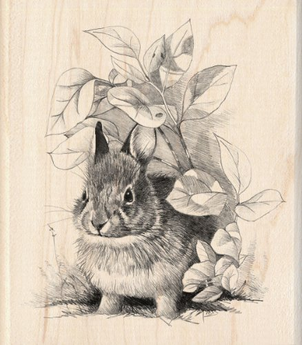 Inkadinkado Mounted Rubber Stamp, 4 by 3.5-Inch, Bunny Retreat