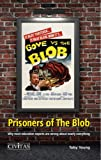 Prisoners of the Blob: Why most education experts are wrong about nearly everything