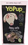 Yoghund YoPup Happy Belly Wheat Free Biscuits with Yogurt Probiotic Icing for Pets, 7-Ounce