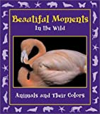 Beautiful Moments in the Wild: Animals and Their Colors (Moments in the Wild series)