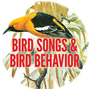 Bird Song and Behavior | [Donald J. Borror]
