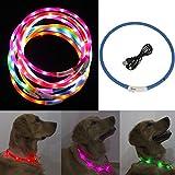 iEFiEL Hunde Leuchthalsband Universell Kürzbar LED Hundehalsband Leuchtband Leuchtschlauch Blink Hundehalsband 70cm, Aufladen per USB, 3 Modell Blink, Wasserdicht (One Size, Blau)
