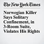 Norwegian Killer Says Solitary Confinement, in 3-Room Suite, Violates His Rights   Henrik Pryser Libell