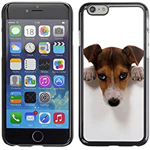 Omega Covers - Snap on Hard Back Case Cover Shell FOR Apple Iphone 6 Plus / 6S Plus ( 5.5 ) - Surfer Dog On Field