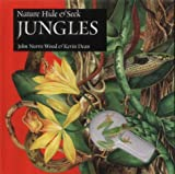 Jungles (Nature Hide & Seek)