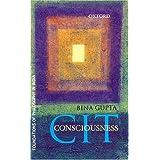 CIT Consciousness (Foundations of Philosophy in India) ~ Bina Gupta