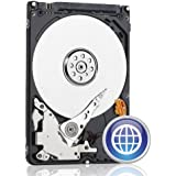 Western Digital 250 GB Scorpio Blue SATA 3 Gb/s 5400 RPM 8 MB Cache Bulk/OEM Notebook Hard Drive - WD2500BEVT