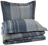 Pinzon Lightweight Cotton Flannel Duvet Set - Full/Queen, Blue Stripe