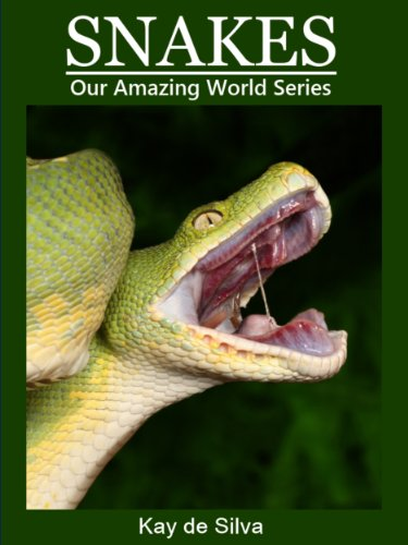 Snakes: Amazing Photos & Fun Facts on Animals in Nature (Our Amazing World Series)