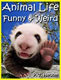Animal Life Funny & Weird Land Mammals - Learn with Amazing Photos and Fun Facts About Animals and Land Mammals (Funny & Weird Animals Series)