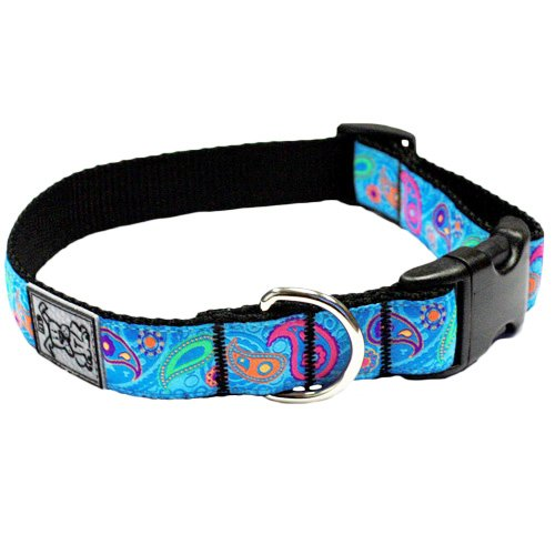RC Pet Products 1-Inch Adjustable Dog Clip Collar, 15 by 25-Inch, Large, Tropical Paisley