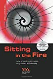 img - for Sitting in the Fire: Large Group Transformation Using Conflict and Diversity book / textbook / text book