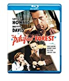 Petrified Forest [Blu-ray]