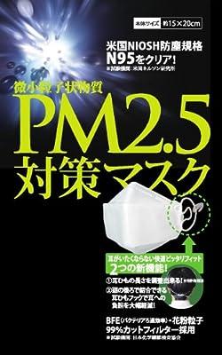 高機能マスク 東レセハン社 不織布を使用 N95 PM2.5対策マスク 10枚セット [ヘルスケア&ケア用品]