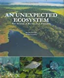 img - for An Unexpected Ecosystem: The Amazon as Revealed by Fisheries by Ronaldo Barthem, Michael Goulding (2007) Paperback book / textbook / text book