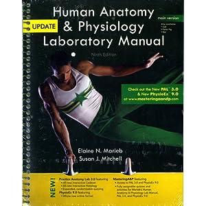 human anatomy   physiology laboratory manual  main version human anatomy laboratory manual with cat dissections 7th edition human anatomy laboratory manual with cat dissections 7th edition answer key
