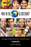 img - for What in the World is God Doing?: An Introduction to World Missions book / textbook / text book