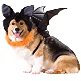 Animal Planet PET20103 Bat Dog Costume, Large