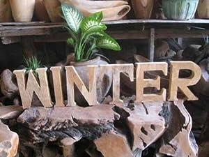 Schriftzug winter teakwurzel 32466 holzbuchstaben for Weihnachtsdeko buchstaben