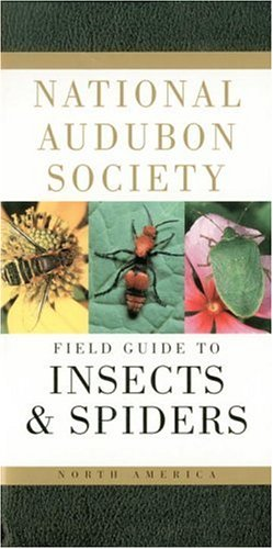 national-audubon-society-field-guide-to-insects-and-spiders-north-america-national-audubon-society-f