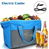 Causalyg 12 Volt DC Soft Electric Car Cooler/Warmer Bag, Portable Car Refrigerator/Fridge with Thermoelectric System for Camping, Road Trip, Picnic - 18L Capacity