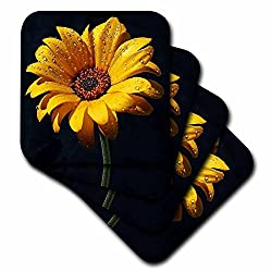 3dRose cst_98576_3 Dew on Sunflower Against Black Backdrop.Jpg-Ceramic Tile Coasters, Set of 4