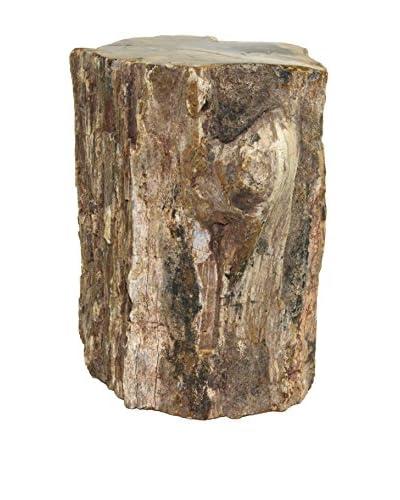 Uptown Down Petrified Wood
