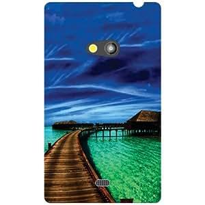 Nokia Lumia 625 Back Cover - Calm Designer Cases
