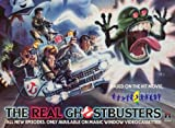 Real Ghostbusters Vol 1 [VHS]